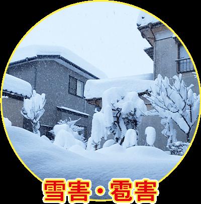 雪害・雹害