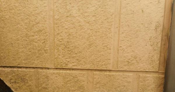 埼玉県さいたま市岩槻区 アパート 屋根塗装・外壁塗装・付帯部塗装 (62)