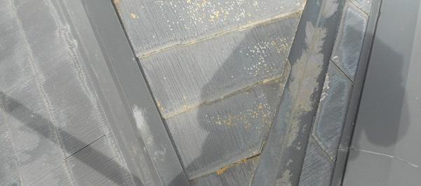 埼玉県さいたま市岩槻区 アパート 屋根塗装・外壁塗装・付帯部塗装 (66)
