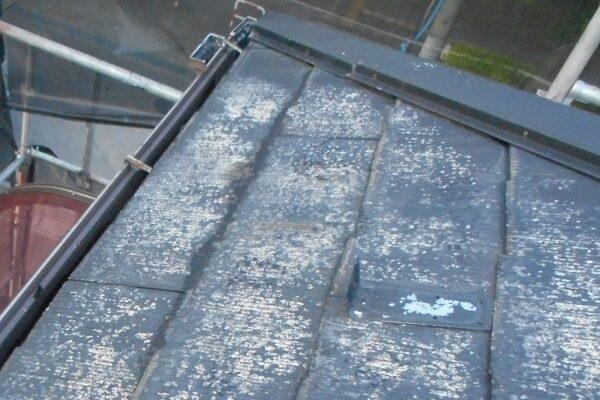 埼玉県さいたま市岩槻区 アパート 屋根塗装・外壁塗装・付帯部塗装 (53)