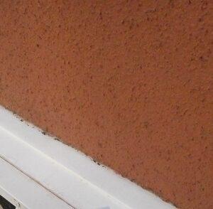 埼玉県さいたま市西区 T様邸 屋根塗装・外壁塗装・付帯部塗装 (18)