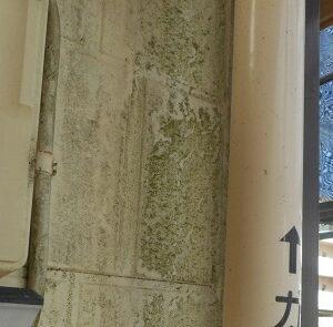 埼玉県さいたま市岩槻区 アパート 屋根塗装・外壁塗装・付帯部塗装 (60)
