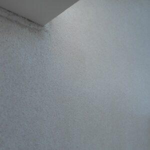 埼玉県さいたま市西区 T様邸 屋根塗装・外壁塗装・付帯部塗装 外壁塗装 日本ペイント パーフェクトトップ ND-370、75-40L (10)
