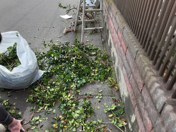 埼玉県さいたま市岩槻区 K様邸 屋根塗装・外壁塗装 足場設置前に植木の伐採を行いました (2)