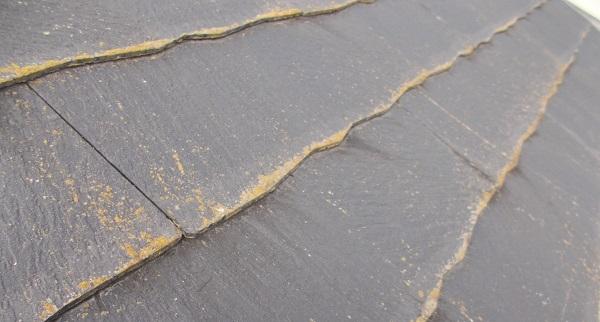 埼玉県さいたま市桜区 K様邸 屋根塗装・外壁塗装・付帯部塗装・雨樋交換 (73)