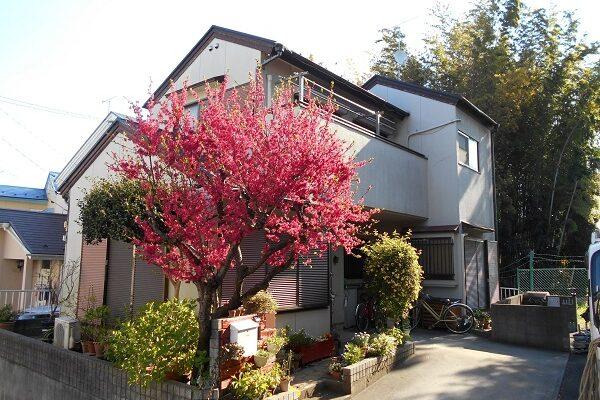 埼玉県さいたま市岩槻区 T様邸 屋根塗装・外壁塗装・付帯部塗装 (52)