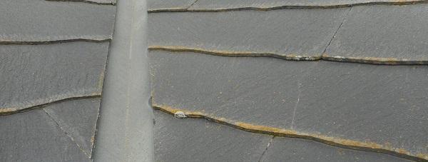 埼玉県草加市 K様邸 屋根塗装・外壁塗装 (22)