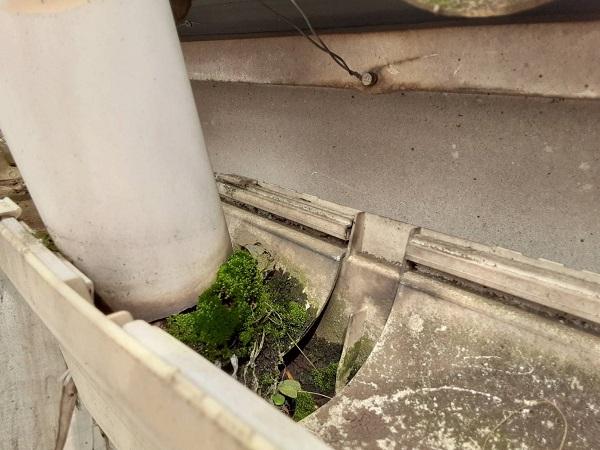 埼玉県さいたま市中央区 H様邸 外壁塗装・付帯部塗装 雨樋の清掃 雨樋の役割とは (2)